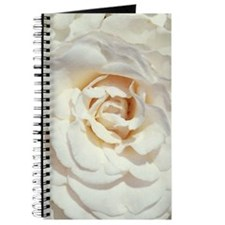 Camellia Journal