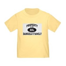 Property of Dangelo Family T