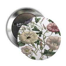 "Morning Glory Art 2.25"" Button (10 pack)"