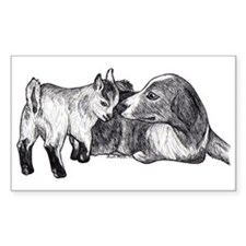 Pygmy Goat Kid and Australian Shepherd Bumper Stickers
