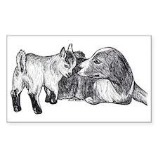 Pygmy Goat Kid and Australian Shepherd Decal