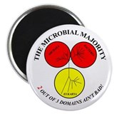 Cute Microbiology Magnet