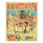 Cats and Dogs Small Poster
