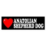 ANATOLIAN SHEPHERD DOG Bumper Bumper Stickers