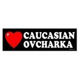 CAUCASIAN OVCHARKA Bumper Car Sticker