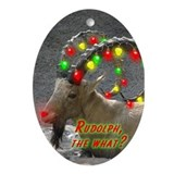 Helaine's Rudolph the What? Ornament (Oval)
