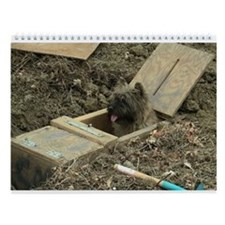 Cairn Terrier Earthdog Wall Calendar