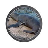 Sealions Wall Clock