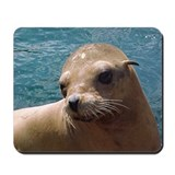 Sealions Mousepad