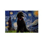 Starry / Std Poodle(bl) Rectangle Magnet (10 pack)