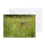 Field Flowers Greeting Card