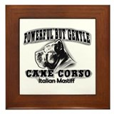 Powerful corso Framed Tile
