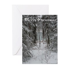 Merry Christmas Cards, Alaska Scene, 20 pack.