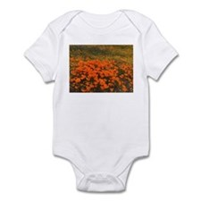 Wildflowers Infant Bodysuit