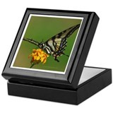 Tiger Swallowtail Butterfly 2 Keepsake Box