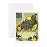 Mother Hen Greeting Cards (Pk of 20)