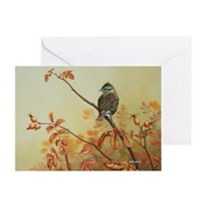House Finch Greeting Cards (Pk of 10)