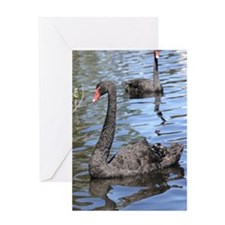 Unique Black swan Greeting Card