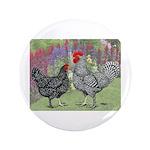 Marans Chickens 3.5