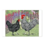 Marans Chickens Postcards (Package of 8)