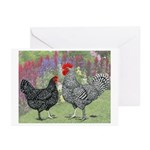 Marans Chickens Greeting Cards (Pk of 10)