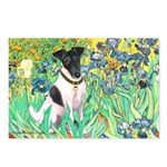 Irises / T (#1) Postcards (Package of 8)