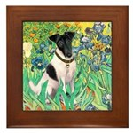 Irises / T (#1) Framed Tile