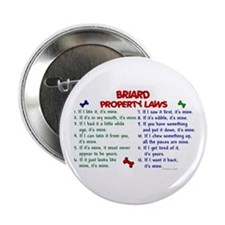 "Briard Property Laws 2 2.25"" Button"