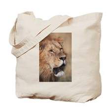 MALE LION APPROACHES Tote Bag