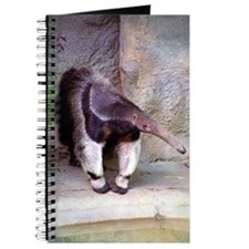 Giant Anteater Front Journal