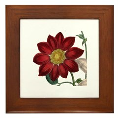 Dahlias Framed Tile