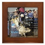 Shippy Rodeo Bulls Framed Tile