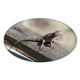 Helaine's Lizard Oval Decal