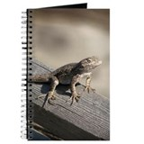 Helaine's Lizard Journal