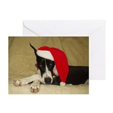 CMtl Santa Greeting Cards (Pk of 20)