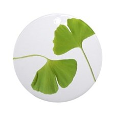 Ginkgo Biloba Leaves Ornament (Round)