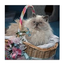 Himalayan Cat Tile Coaster
