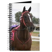 Cute Standardbred horse Journal
