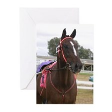 Unique Harness racing Greeting Cards (Pk of 20)