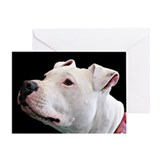 Funny Bull terrier dog breed Greeting Card