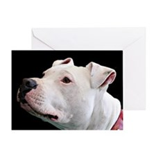 Cute Pit bulls Greeting Card