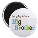 Big Brother (fun) Magnet