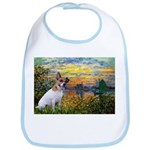 Sunset / JRT Bib