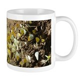 Butterfly  Tasse