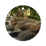 Maine Coon cat bushy tail Ornament (Round)