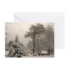 Winter Landscape Photo Greeting Cards (Pk of 20)
