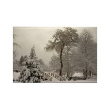 Winter Landscape Photo Rectangle Magnet (10 pack)