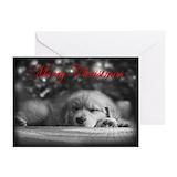 Golden retriever christmas Greeting Cards (10 Pack)