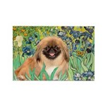 Irises / Pekingese(r&w) Rectangle Magnet