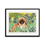 Irises / Pekingese(r&w) Framed Panel Print